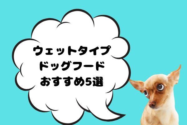 犬用のウェットフードおすすめ人気5選|安全で食いつきが良いのは?
