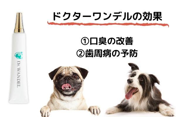 ①口内保護 ②口内浄化作用 ③口内保湿 ④口内環境を整える