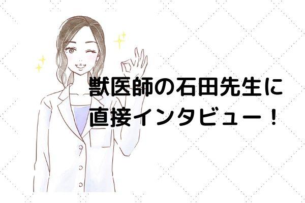 監修獣医師さんに 直接取材! (2)