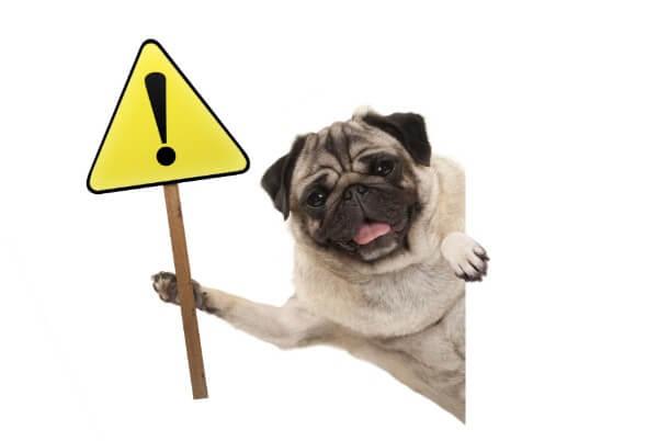 犬 危険 注意 !