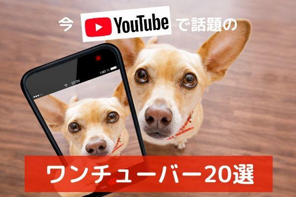 【ワンチューバーって何?】YOUTUBEで人気の犬動画20選