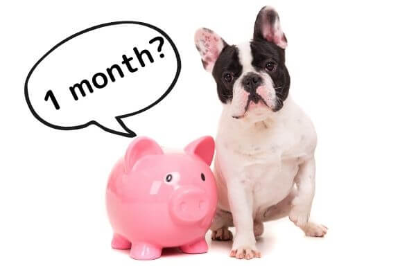 1 month_