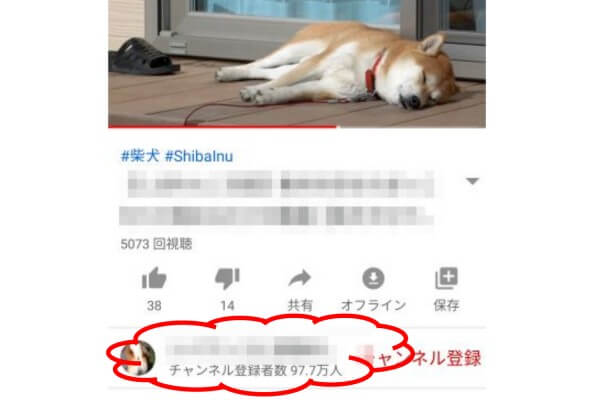 YouTubeチャンネル登録最大の犬