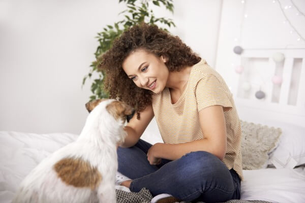 飼い主と犬