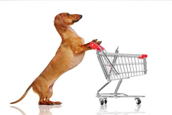 犬 買い物