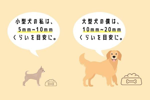 愛犬の口のサイズにあった粒を選ぼう