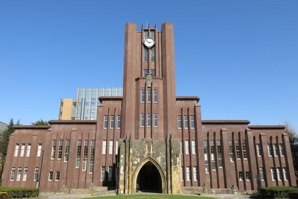 ドクターワンデル 東京大学