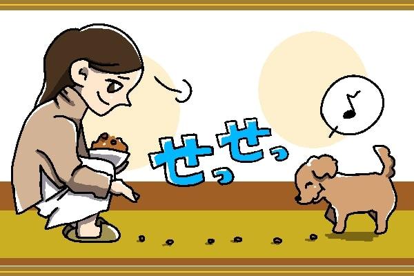 一種のゲーム感覚?床に一列に並べたドッグフードを食べながら進む