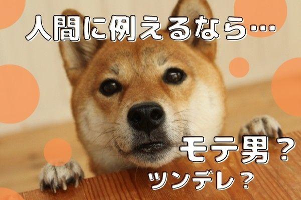 愛犬を人間に例えたらどんな子?アイドルやモテ男などおもしろ回答を大公開!
