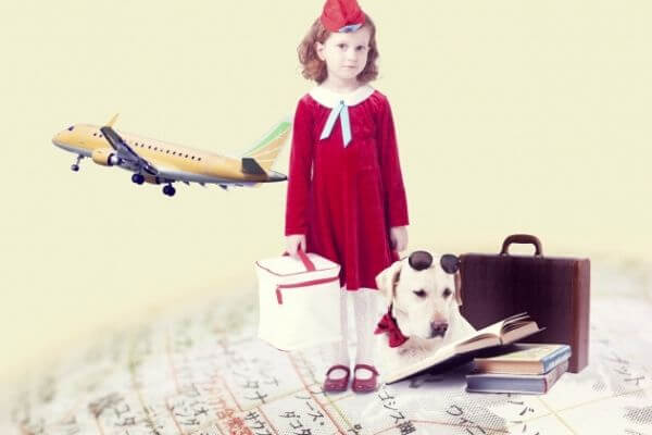犬 飛行機 子供