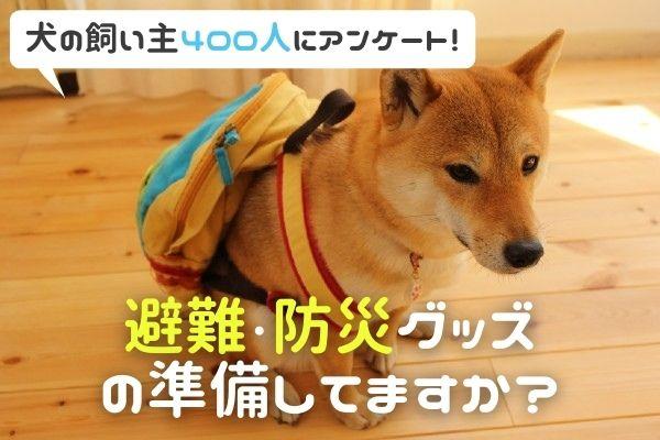 愛犬の避難グッズ「準備してない人は85%以上!?」災害がおきたらどうやって避難する?【飼い主400人にアンケート】