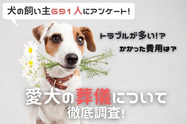 愛犬が亡くなったら葬儀どうする?トラブルがあった人も…!?【犬の飼い主さん691人に大調査!】