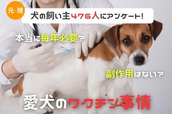 副作用があった犬は◯%?知っているようで知らないワクチン事情!【犬の飼い主476人アンケート】