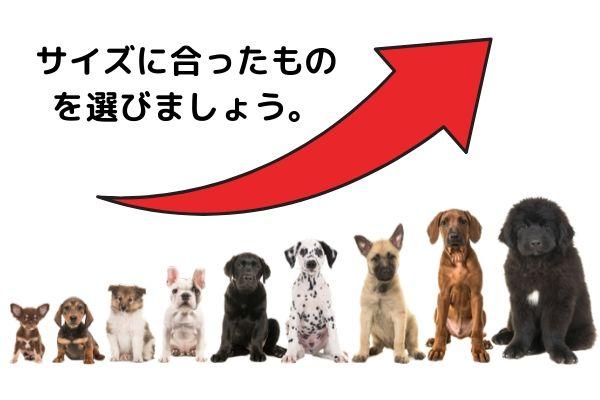 犬・サイズ