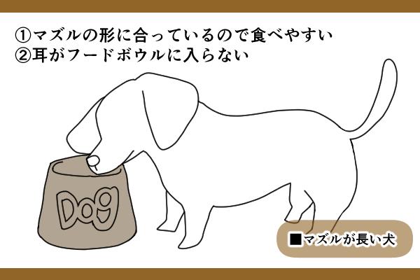 マズルの長い・中間の犬の場合