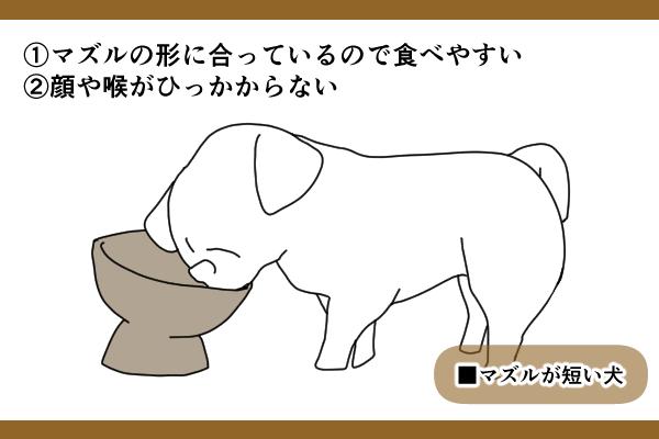 マズルの短い犬の場合