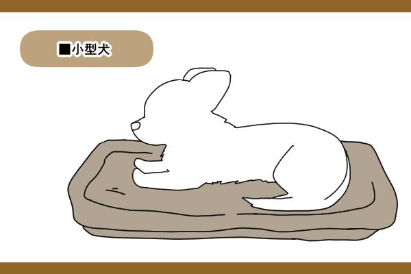 小型犬や胴長の犬種は段差が少ないものがおすすめ