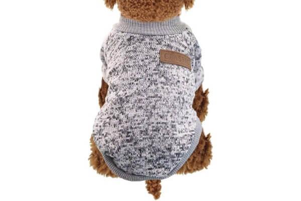 犬・セーター