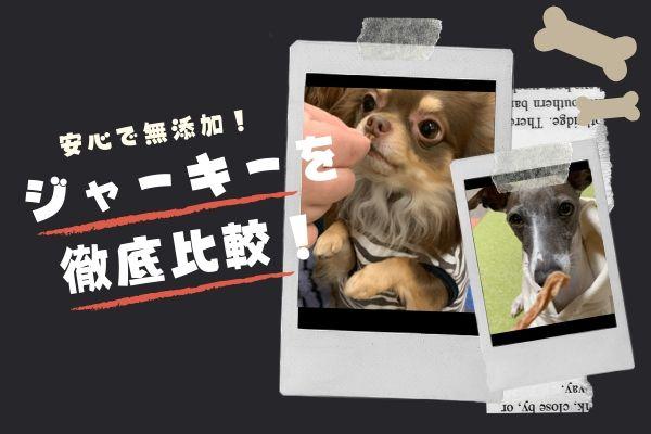 【比較検証】犬用ジャーキーおすすめ5選|安全なおやつの選び方は?