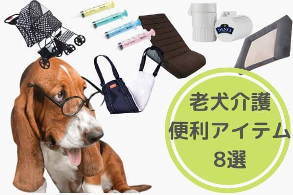 老犬の介護グッズおすすめ8選|便利でオシャレなグッズはコレ!